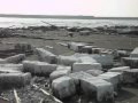 美麗海岸保麗龍的汙染1