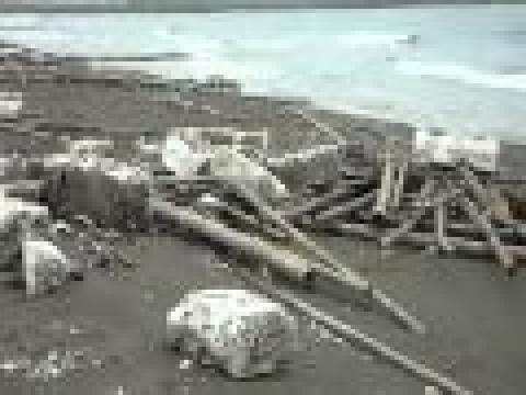 美麗海岸保麗龍的汙染4